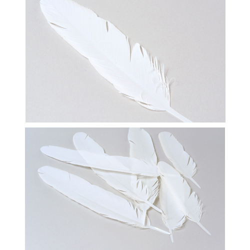 Yupo Wally Awards Paper Feathers